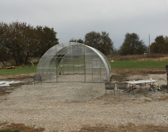 Greenhouse Day 3