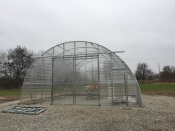 Greenhouse Day 5